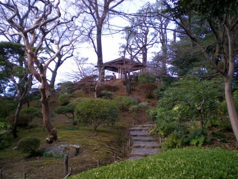 旧古河庭園 047