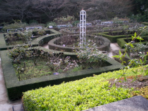 旧古河庭園 053