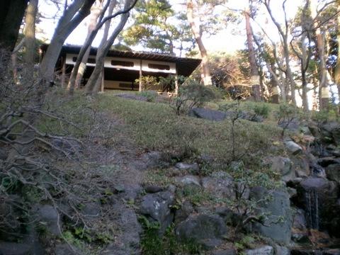 殿ヶ谷戸庭園 (44)