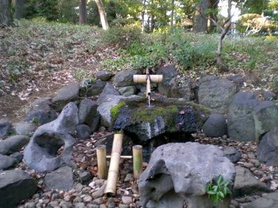 殿ヶ谷戸庭園 (48)