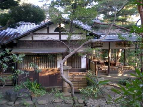 殿ヶ谷戸庭園 (54)