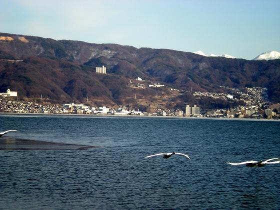 諏訪湖  (76)