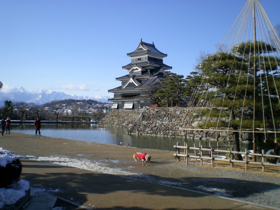 松本城 (8)