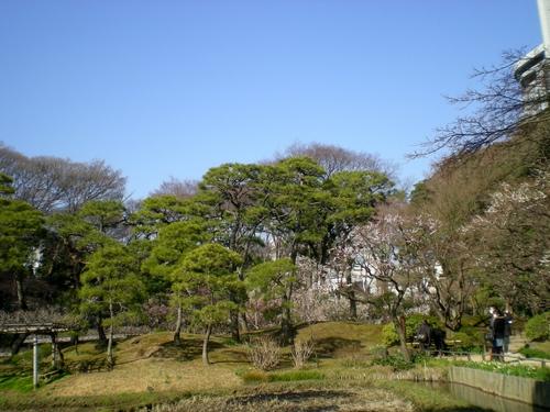小石川後楽園 (74)