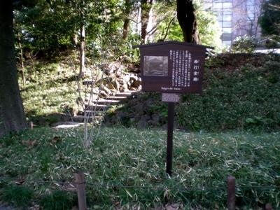 小石川後楽園 (88)