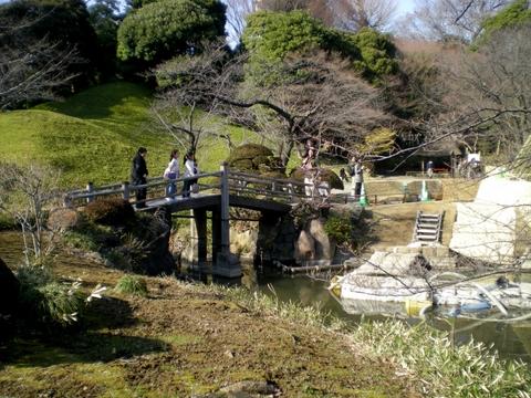 小石川後楽園 (94)