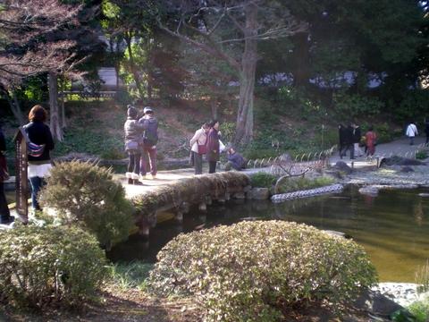 小石川後楽園 (96)