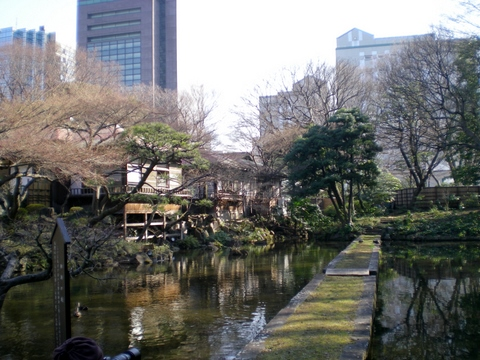 小石川後楽園 (100)