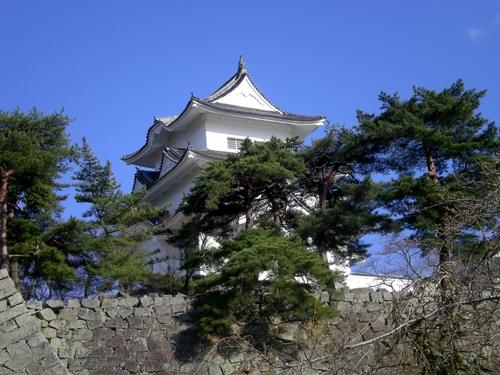 伊賀上野城 (194)