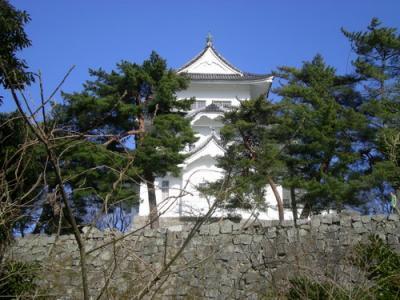 伊賀上野城 (191)