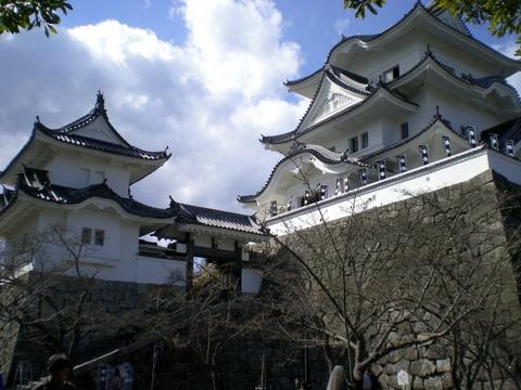 伊賀上野城 (111)