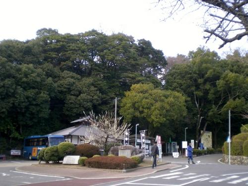 伊賀上野城 (183)