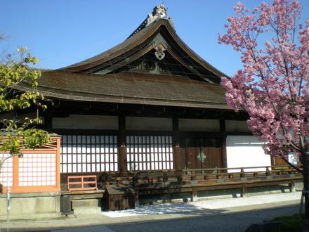 東寺 (96)
