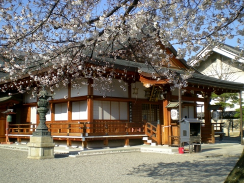 東寺 (116)-1