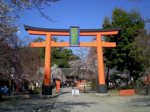 平野神社 (4)