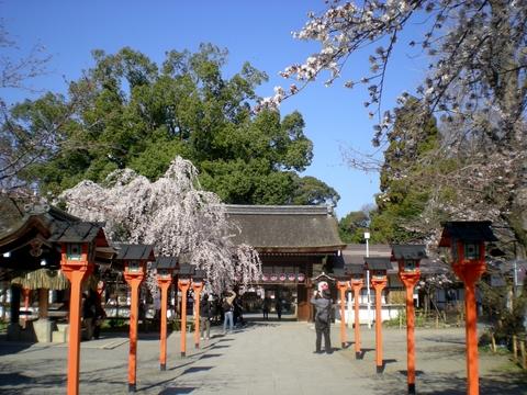 平野神社 (5)