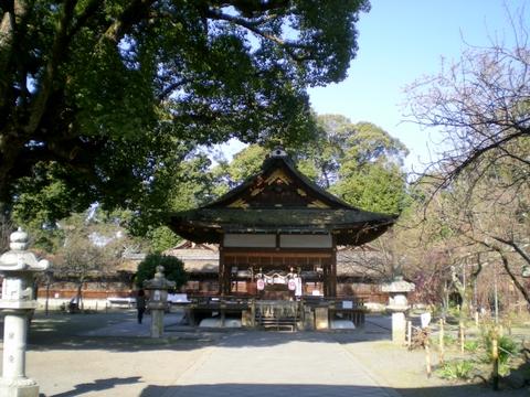 平野神社 (8)