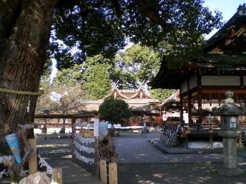 平野神社 (9)-1