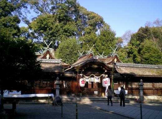 平野神社 (10)