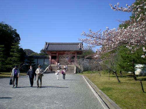 仁和寺 (75)