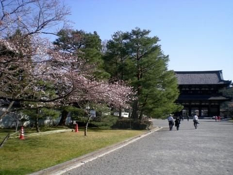 仁和寺 (117)
