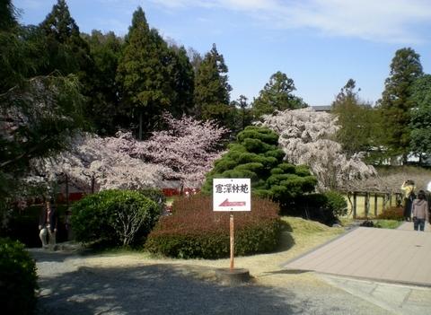 醍醐寺 (39)