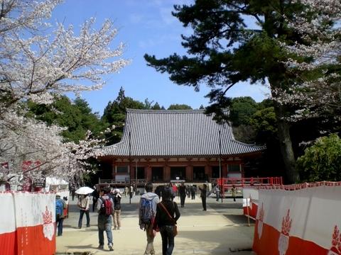 醍醐寺 (98)
