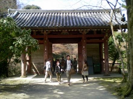 醍醐寺 (112)