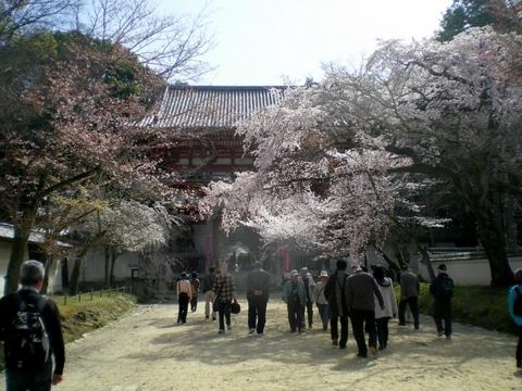 醍醐寺 (65)