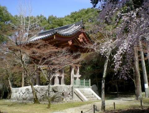 醍醐寺 (113)