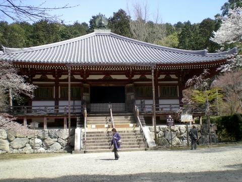 醍醐寺 (114)
