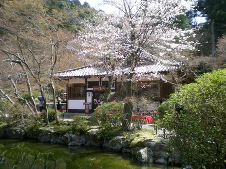 醍醐寺 (123)