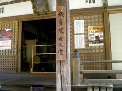 醍醐寺 (142)