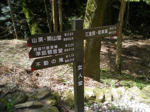 醍醐寺 (150)