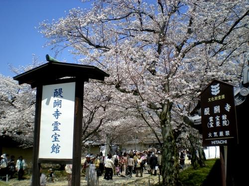 醍醐寺 (198)