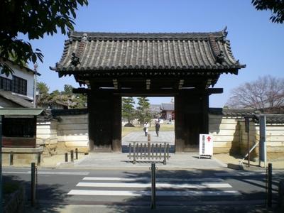薬師寺 (47)