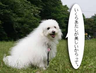 IMG_3845.jpg