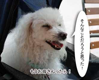IMG_6359.jpg