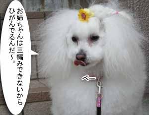 IMG_6408.jpg