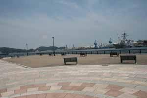 IMG_6888.jpg