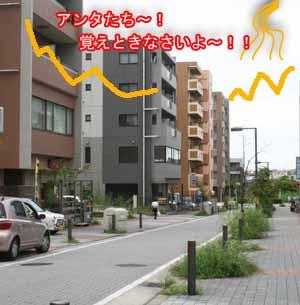 IMG_7768-2.jpg