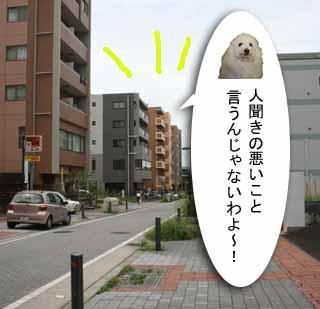 IMG_7769-3.jpg