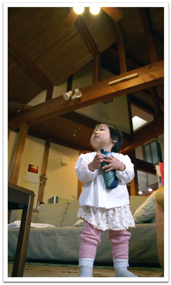 tottori-house.jpg