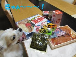 博多からの贈り物。