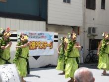 信玄公祭りフラ3