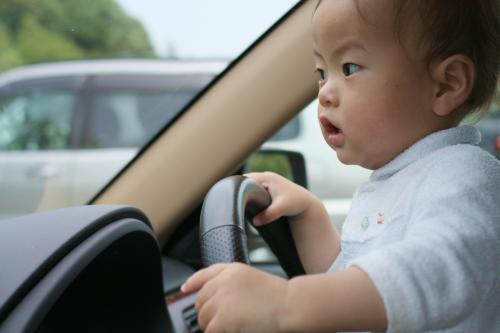 車を運転する次男?