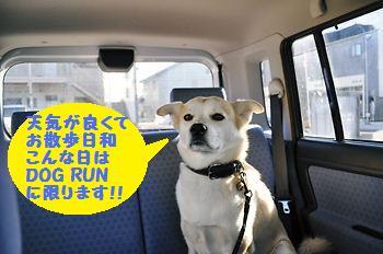 020_20090109144952.jpg