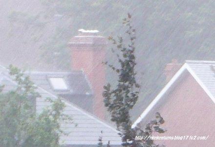 大雨です・・・