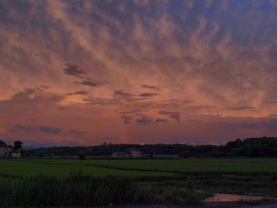 20080918_18.jpg