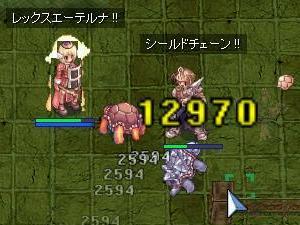 亀D狩りっ!